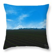 Coastal Farm Country Texas Throw Pillow