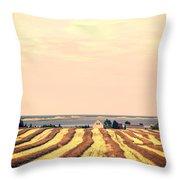 Coastal Farm Pei Throw Pillow by Edward Fielding