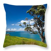 Coastal Farmland Landscape With Pohutukawa Tree Throw Pillow