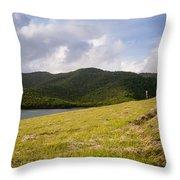 Coastal Hills Throw Pillow