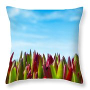 Coastal Ice Plant Throw Pillow