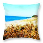 Coastal Lookout Throw Pillow