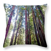 Coastal Redwoods Reach For The Sky In Armstrong Redwoods State Preserve Near Guerneville-ca Throw Pillow