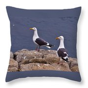 Coastal Seagulls Throw Pillow