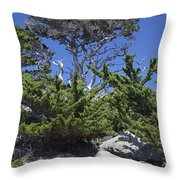 Coastal Trees In California's Point Lobos State Natural Reserve Throw Pillow by Bruce Gourley