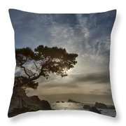 Coastal Vision Throw Pillow