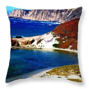 Coastal Vista  Throw Pillow