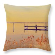 Coastal Winter Throw Pillow