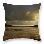 Coastal Winters Afternoon Throw Pillow