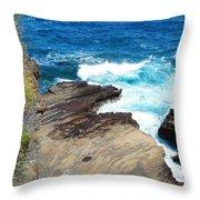 Coastline Splendor Throw Pillow