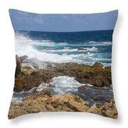 Coastline Surge Throw Pillow