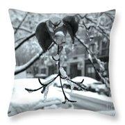 Coat Of Ice - Winter In New York Throw Pillow