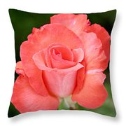 Cobra Rose  Throw Pillow by Christine Till