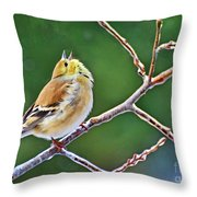 Cock-a-doodle Doo Gold Finch - Digital Paint Throw Pillow