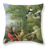 Cock Pheasant Hen Pheasant And Chicks And Other Birds In A Classical Landscape Throw Pillow