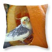 Cockatiel - Glutton Throw Pillow