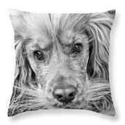 Cocker Spaniel Dog Black And White Throw Pillow