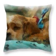 Cocker Spaniel Photo Art 06 Throw Pillow