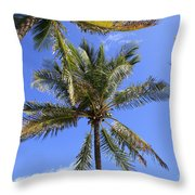 Cocoanut Palm Trees Sky Background Throw Pillow