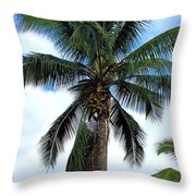 Coconut Palm Tree Throw Pillow