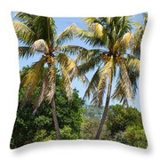Coconut Palm Trees In Key West Throw Pillow