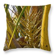 Coconut Shoot Throw Pillow