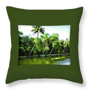 Coconut Trees And Other Plants In A Creek Throw Pillow
