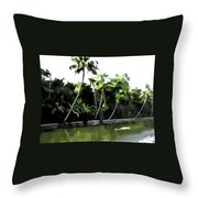 Coconut Trees And Others Plants In A Creek Throw Pillow