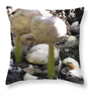 Coffee Beans Soldier  Stage One Of The Seed Giving Birth To A Cash Crop Plant Tree In Costa Rica Throw Pillow