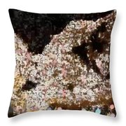Coffee Bubbles 3 Throw Pillow