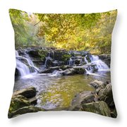 Coker Creek Falls Throw Pillow
