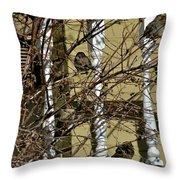 Cold Birds Throw Pillow