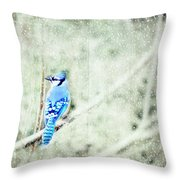 Cold Day For A Blue Jay Throw Pillow