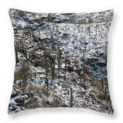 Cold Day In Hell Throw Pillow