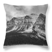 Cold Face Throw Pillow