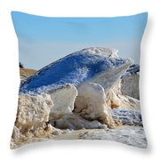 Cold Frog Throw Pillow