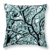 Cold Frosted Limbs Above Throw Pillow