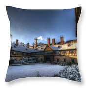 Cold Hof Throw Pillow