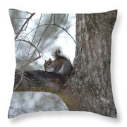 Cold January 2014 Throw Pillow