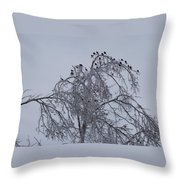 Cold Landing Pt 2 Throw Pillow