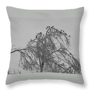 Cold Landing Pt3 Throw Pillow