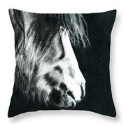 Cold Light Throw Pillow