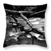 Cold Mountain Stream Hdr Work #1 Throw Pillow