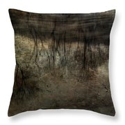 Cold Reflection 2 Throw Pillow