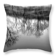 Cold Reflection Throw Pillow