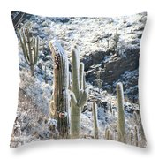Cold Saguaros Throw Pillow