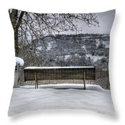 Cold Seat With A View 2 Throw Pillow
