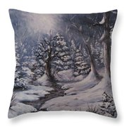 Cold Snap Throw Pillow