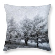 Cold Spell Throw Pillow