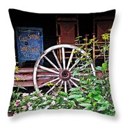 Cold Springs Safe Throw Pillow